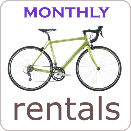 Monthly Bike Rentals