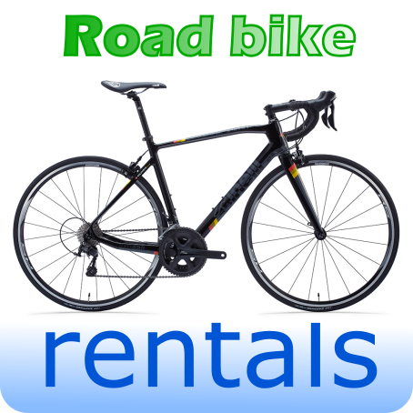 Road Bike Rental / Hire